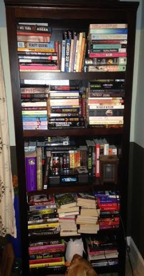 My bookcase after I got frustrated and gave up, knowing that I need to buy at least one more bookcase.